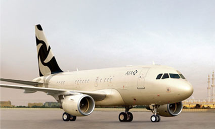 Exterior of Airbus 318 Elite